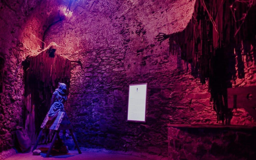 Room of curiosities and multimedia torture chambers